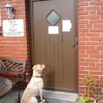 Anmeldung: Sehnsüchtig wartet Labradorhündin Emma darauf, dass ihr die Tür zur Gütersloher Praxis für Tierphysiotherapie geöffnet wird.