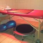 Massageliege mit Magnetfeld und Rotlicht: Auf der Massageliege genießen Hunde und Katzen unterm Rotlicht die Behandlung und lassen die angenehmen Schwingungen des Magnetfeldes auf sich wirken.